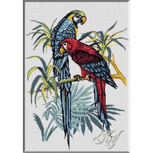 336. Papagali 2