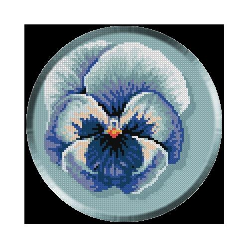 654. Panseluta albastra