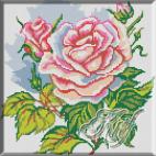 050. Trandafir roz