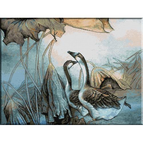 1235 - Frunze uscate pe lac