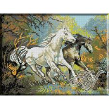 072. Mustangi