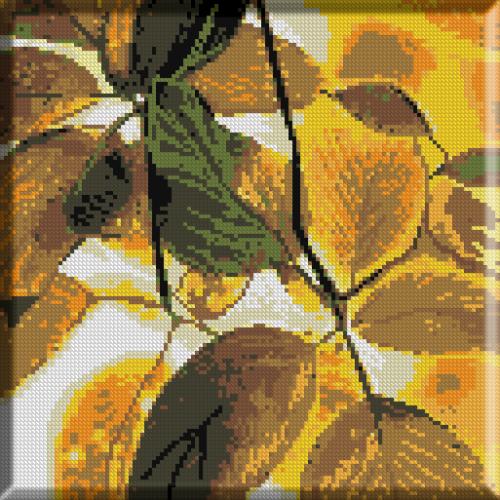 882.Solzii frunzelor marunte