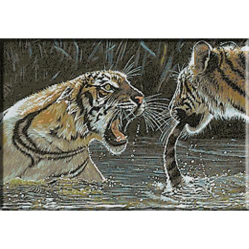 1424 - Lupta tigrilor