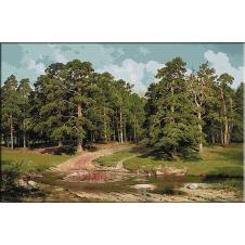 1680.Shishkin - Padurea de pini
