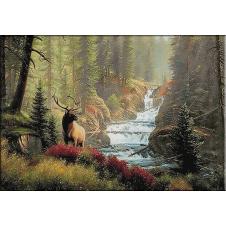 1840.Cascada cerbilor