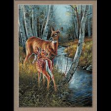 2699-Deer