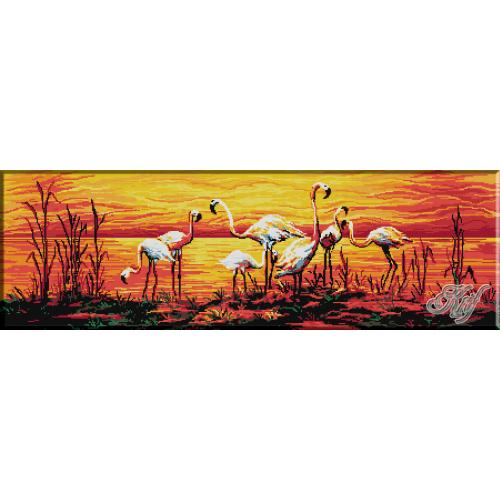 329. Flamingo