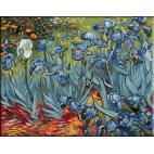 457. Van Gogh - Gradina cu irisi