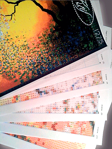 goblen cu diagrama color KRIF