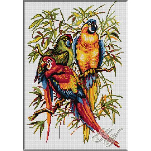 335. Papagali 1