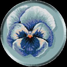 654.Cristina. Panseluta albastra