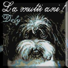794. Dolly
