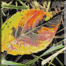 874.Cu alai de frunze moarte