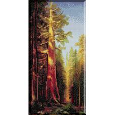 1076. Bierstadt - Marele copac, Mariposa Grove, California