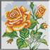 052. Trandafir galben