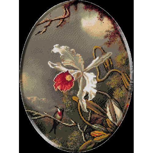 1243 - Heade.Orhidee si privighetoare