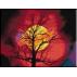1280.Cristina - Framantarile unui stejar uscat