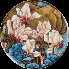 1310. Cristina   - Ciclamen japonez