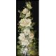 984.N.Grigorescu - Flori de nalba