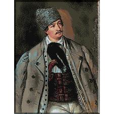 273.Barbu Iscovescu -Avram Iancu