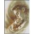 1596 - Puiul mamei