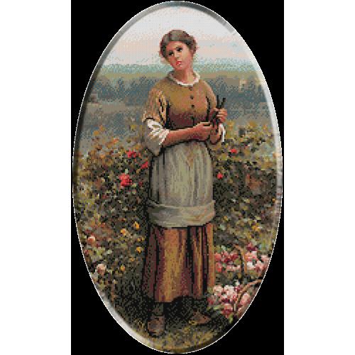 1288b.Knight - Iulia culegand trandafiri