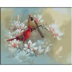 2012.Magnolii si pasari