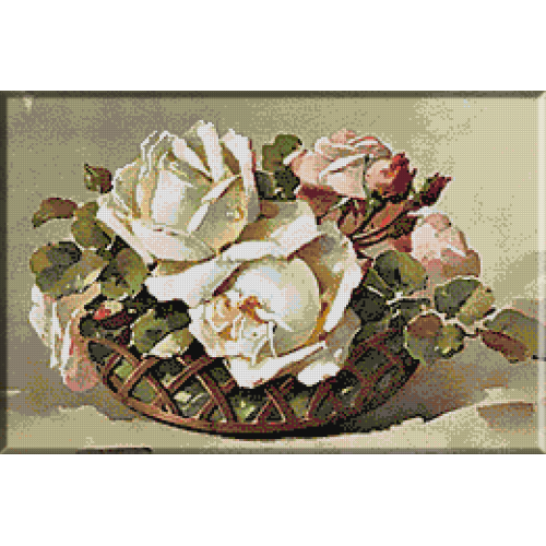 1899.Klein - Trandafiri albi