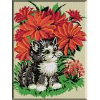 089. Pisica maro