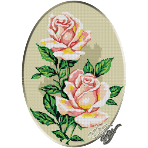 185. Trandafiri roz