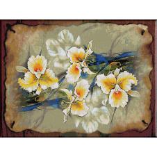 2161.Cristina-Iluzie imaculata