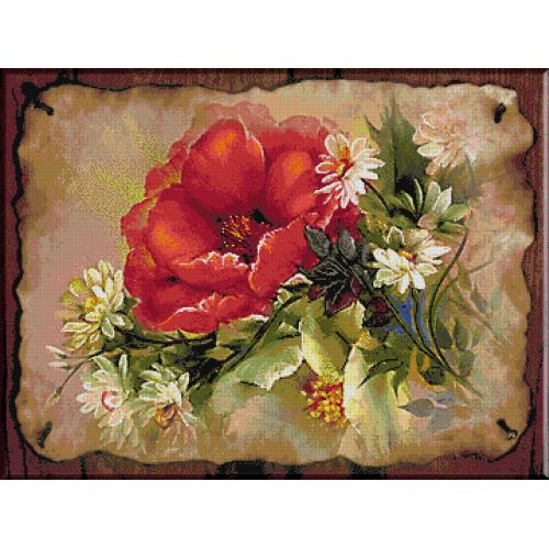 2162.Cristina-Iluzie florilor de camp