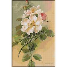 goblen_Klein-Flori de macies