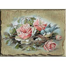 Cuib de pasari si trandafiri
