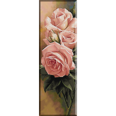 2377.pink roses