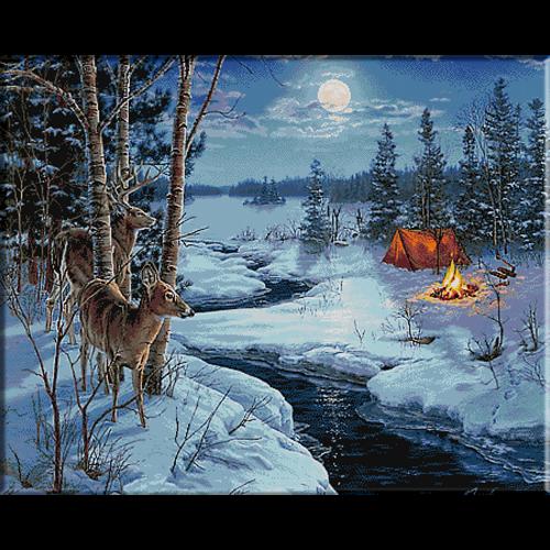 2580.deer night