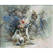 2596.Bicycles, cats