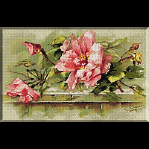 flori-trandafiri salbatici