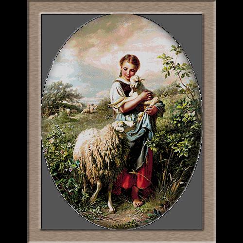 2629.Johann-Baptist-Hofner овчарка