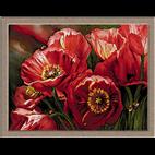 flori-doamnele verii
