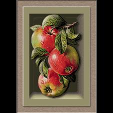 2671.Cristina-ябълки