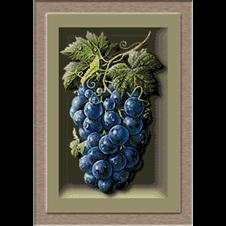 2673.Cristina-Grapes