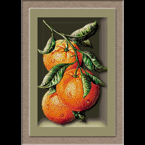 2674.Cristina-Orange