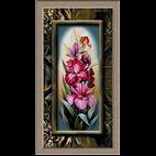 flori-irisi