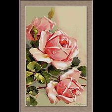 2755.Klein-рози