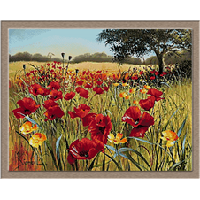 2761 Field with poppies