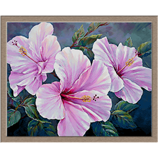 2883.Hibiscus