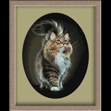 3070.Suflet de pisica