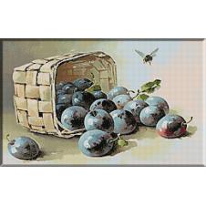 1728. Klein - Cos cu prune